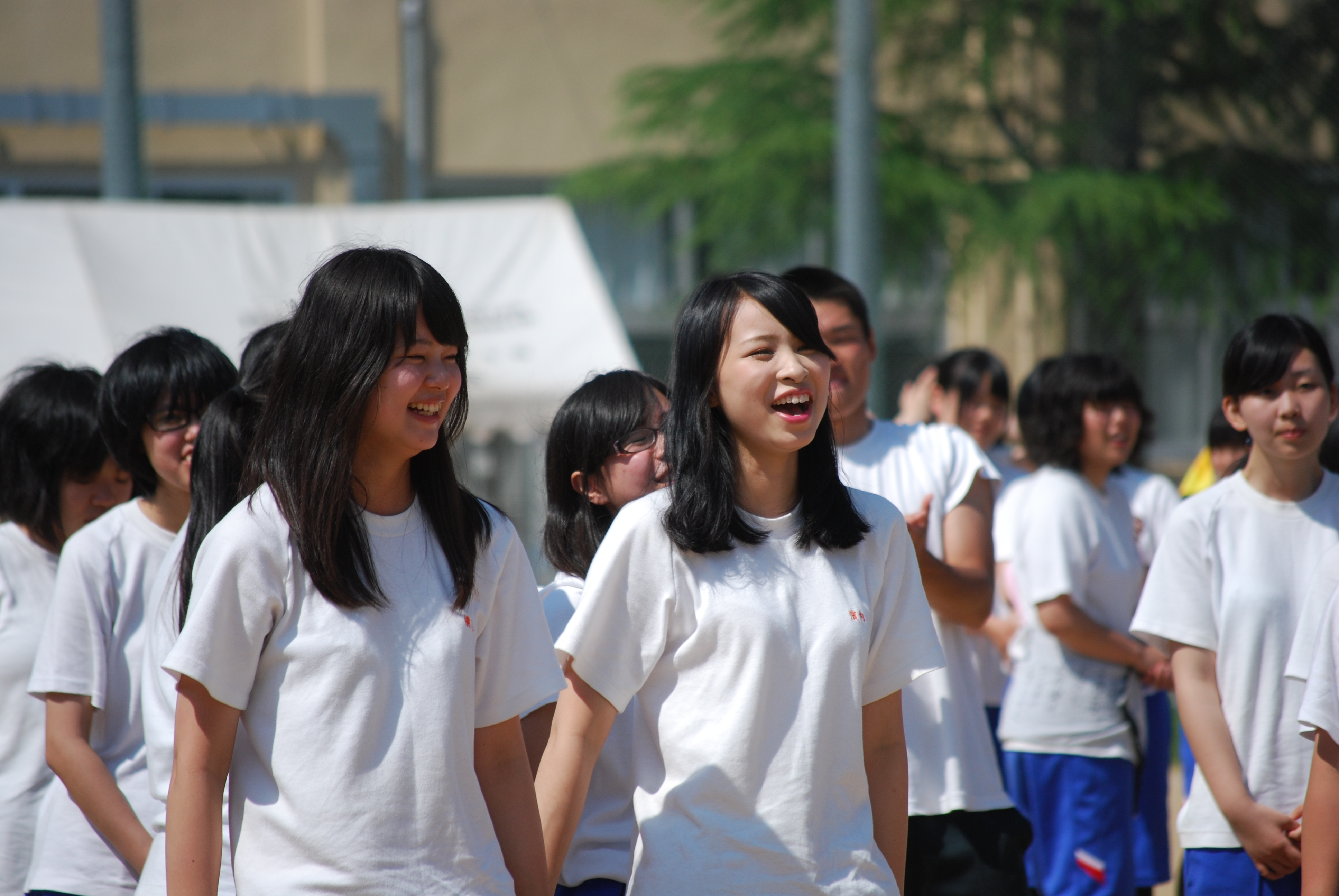 中日スポーツ(CHUNICHI Web)