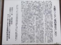 DSC04277 (2)